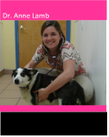 Dr. Ann Lamb is a graduate of The Ohio State College of Veterinary Medicine.